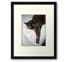 This is MY Bed! Framed Print