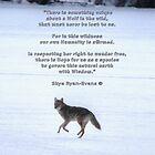 Grey Wolf Running on Frozen Lake & Quote by Skye Ryan-Evans