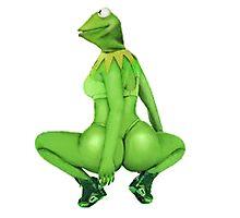 Kermit Anaconda Meme Photographic Print