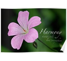 Harmony knows only love everywhere! Poster