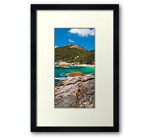 Southern Paradise Framed Print