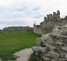Old castle in Kremenets by TarasKokovsky