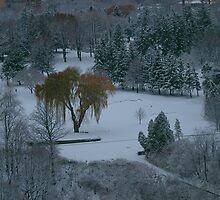A Winter Wonderland on the 18th Hole... by Larry Llewellyn