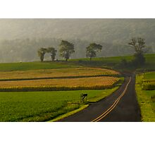 Take Me Home Country Roads Photographic Print