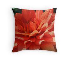 Red Dahlia Up Close Throw Pillow