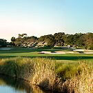 Hilton Head Golf Course by dbschanck