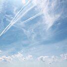 Blue Skies by ReidOriginals