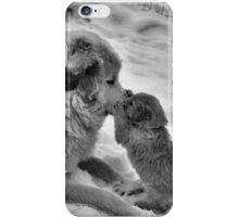 Double Paw Kiss iPhone Case/Skin