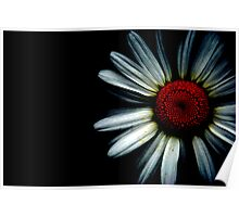 Daisies Have Darksides too Poster