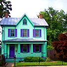 green house with purple shutters by mychaelalchemy