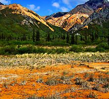 Alaska Matanuska Valley by Betterphotoart