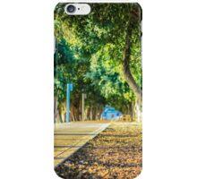 Ficus wood path iPhone Case/Skin