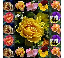 Roses and Pansies Collage Photographic Print