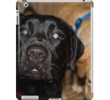 Jake iPad Case/Skin