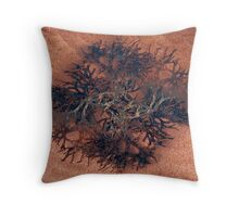 Seaside Found Objects Throw Pillow