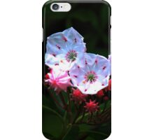 Mountain-laurel iPhone Case/Skin