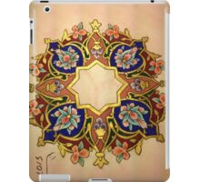 Multicolor Miniatures iPad Case/Skin