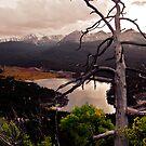 Goose Pasture Tarn by Josh Dayton