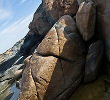 Sleeping - Eyre Peninsula, South Australia by Stephen Permezel