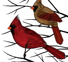 Cardinals by SigneNordin