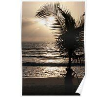 Sun Palm 2008 Poster