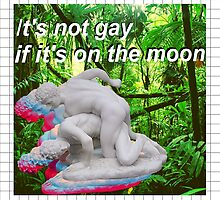 It's not gay if it's on the moon by dogwith16two