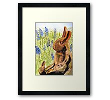 Terra Cotta Bunny Family Framed Print