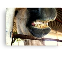 Just had mah teeth cleaned! Canvas Print