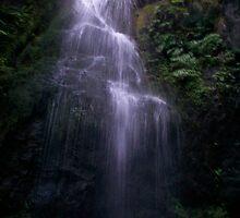 End of Ravine Waterfall by driftweird