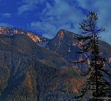 Beauty on the Mountaintop by Mike Griffiths