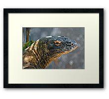 Komodo Monitor Framed Print