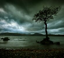 Isolation by Angie Latham