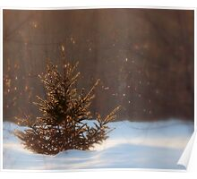 The Glitter Tree Poster