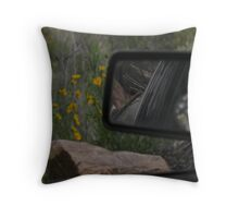 drive by 3 in 1 Throw Pillow