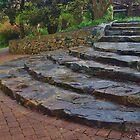 Garden Steps (3) by lezvee