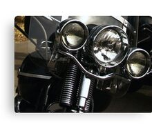 Real Life Wild Hogs! Canvas Print