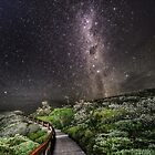 Stairway to Heaven Cape Conran East Gippsland Vic. by helmutk