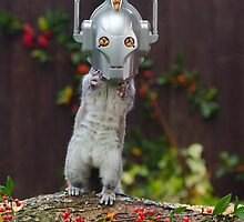 Cyber Squirrel! by ChrisBalcombe