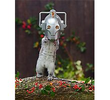 Cyber Squirrel! Photographic Print