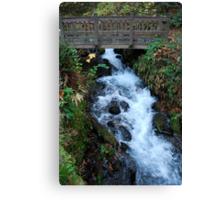 Bridge over Water Canvas Print