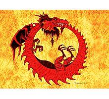Dragon-Ouroboros Photographic Print