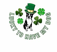 Lucky to have my dog.  by Bostonterrierig