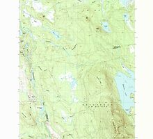 Maine USGS Historical Map Quillpig Mountain 102904 1987 24000 by wetdryvac