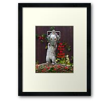 Cyber Squirrel Be FURRY afraid Doctor Who! Framed Print