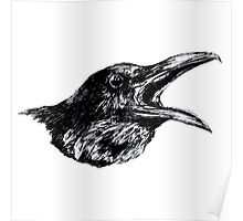 Crow asking Poster