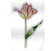 Tangle Tulips Poster