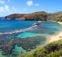 Hanauma Bay by kevin smith  skystudiohawaii