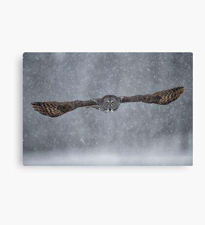 Flight of the Phantom  Canvas Print