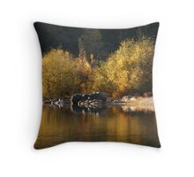 The Golden Reflections of the Bear River Throw Pillow