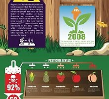 A Comparison between Commercially Farmed and Home Grown Produce by Infographics